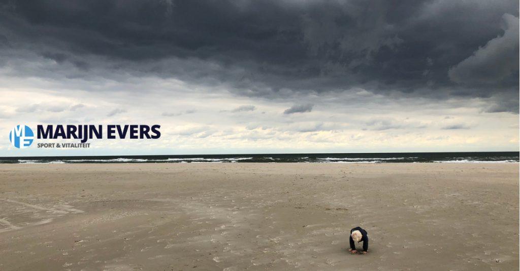 passie of zingeving - marijnevers.nl